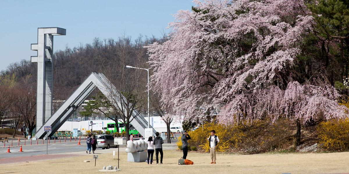 Kết quả hình ảnh cho Seoul National University